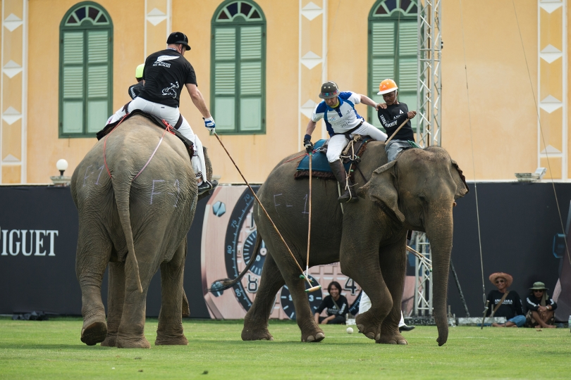 Audemars Piguet as the official timekeeper of 2016 King's Cup Elephant Polo Tournament